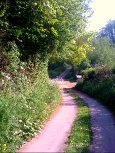 New pathway